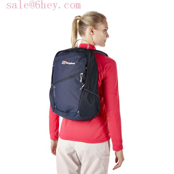 scheels patagonia backpack